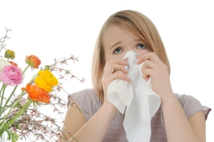 allergy2
