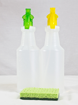 Spray Bottle with sponge